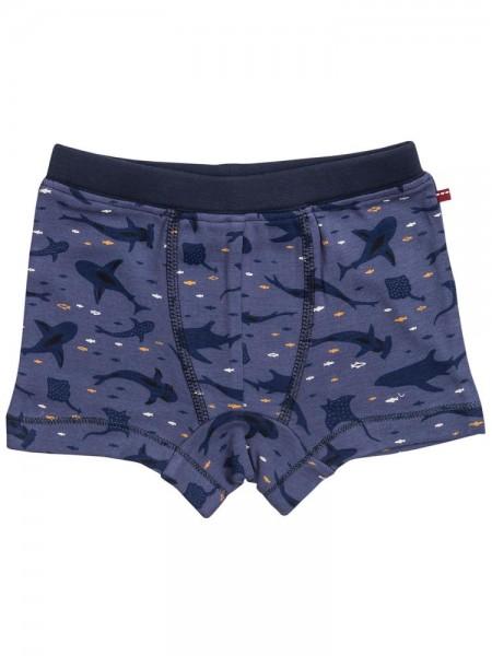 Coole Panty Unterhose Haie + Rochen blau Bio-Baumwolle